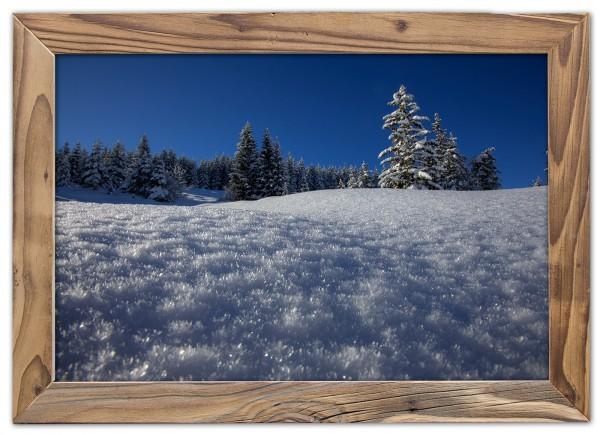 Winterwald am hohen Kranzberg im Altholzrahmen