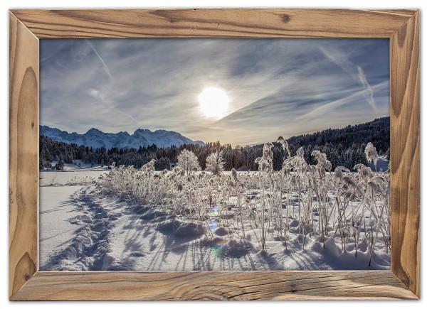 Wintersonne am See im Altholzrahmen
