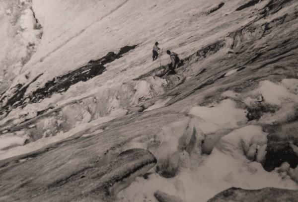 Im Schneefeld